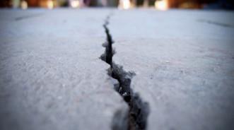 Бактерии BacillaFilla — способ устранения трещин в бетоне