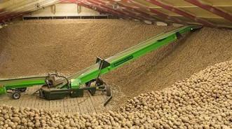 Технология длительного хранения картофеля в овощехранилищах