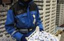 Внедрение системы голосового управления на складах молочной продукции ВАЛИО