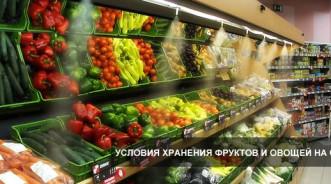 Климатические условия хранения овощей и фруктов
