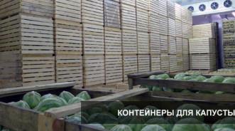 Контейнеры и ящики для хранения капусты на складе