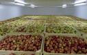 ClimAgro Fruit – технология для эффективного хранения фруктов (яблок, винограда).