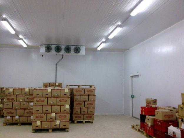 Холодильные склады распределительного типа