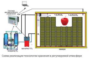 xhran_fructov.jpg.pagespeed.ic.4wFEF26S8S
