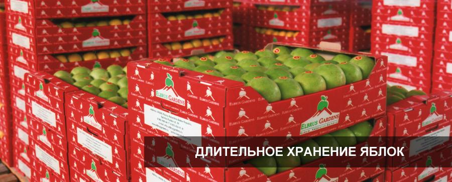 hranenie_yablok