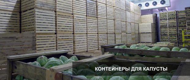 konteynery_kapusta