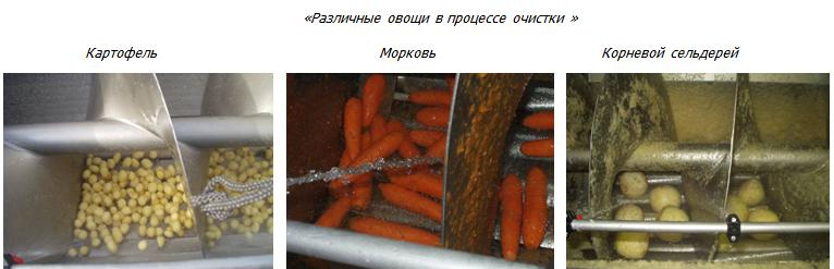 ovoshchi