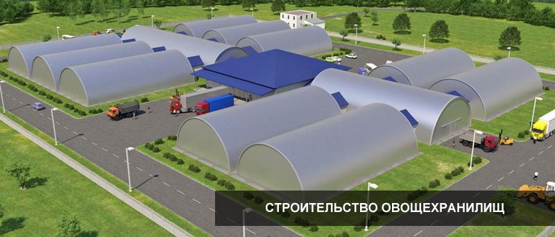 Строительство овощехранилища своими руками